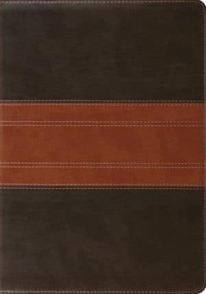 ESV Study Bible Trutone book cover