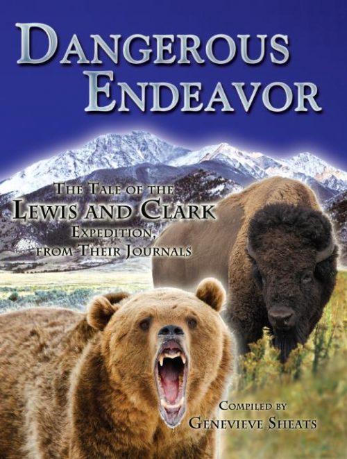Dangerous Endeavor cover
