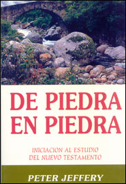 De Piedra en Piedra Grace and Truth Books