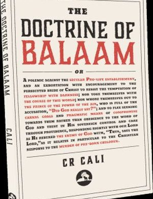 The Doctrine of Balaam book cover