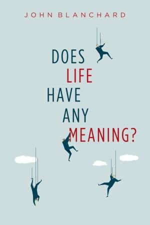 Does Life Have Any Meaning book cover