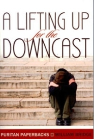 A Lifting Up for the Downcast book image