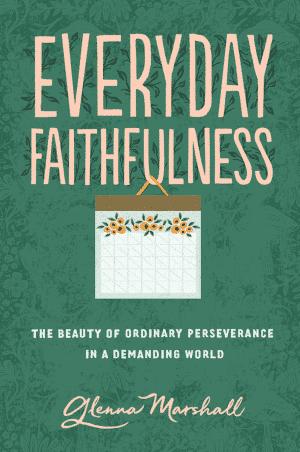 Everyday Faithfulness book cover