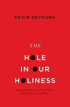 The Hole in Our Holiness book cover