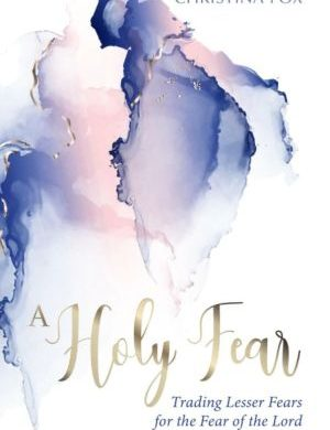 A Holy Fear book cover