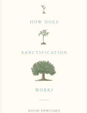 How Does Sanctification Work book cover