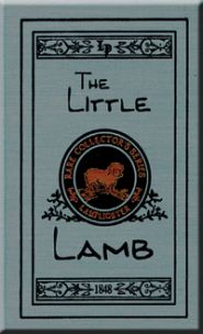 The Little Lamb Grace and Truth Books