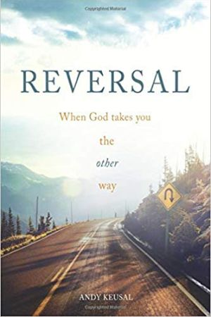 Reversal book cover