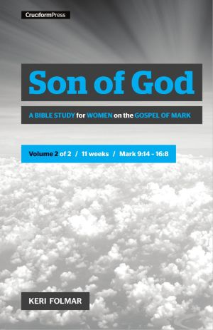 Son of God 2 book cover