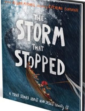 The Storm That Stopped book cover