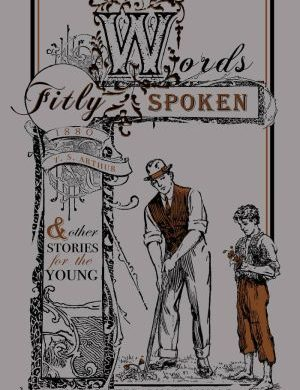 Words Fitly Spoken book cover