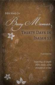 Thirty Days in Isaiah 53 Bible Study for Busy Mamas Grace and Truth Books