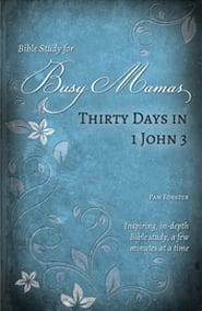 Thirty Days in 1 John 3 Bible Study for Busy Mamas Grace and Truth Books