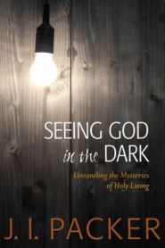Seeing God in the Dark Grace and Truth Books