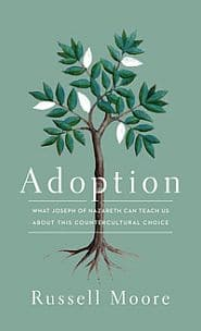 Adoption Grace and Truth Books