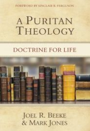 A Puritan Theology Grace and Truth Books