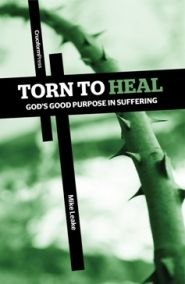 Torn to Heal Grace and Truth Books