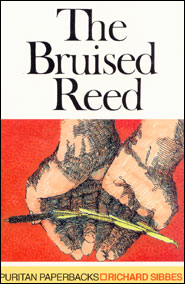bruisedreed