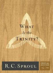 What is the Trinity? Crucial Questions #10 Grace and Truth Books