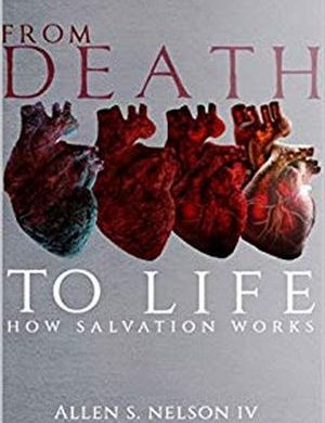 From Death to Life book cover