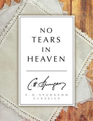No Tears in Heaven book cover