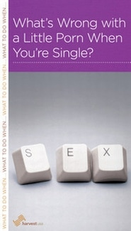 What's Wrong With a Little Porn When You're Single? Grace and Truth Books