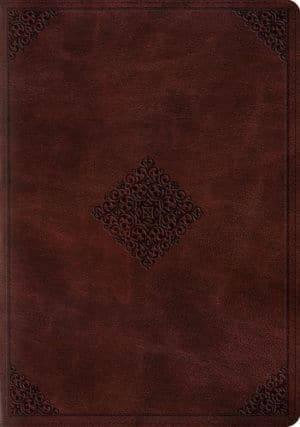 ESV Study Bible Trutone Mahogany book cover